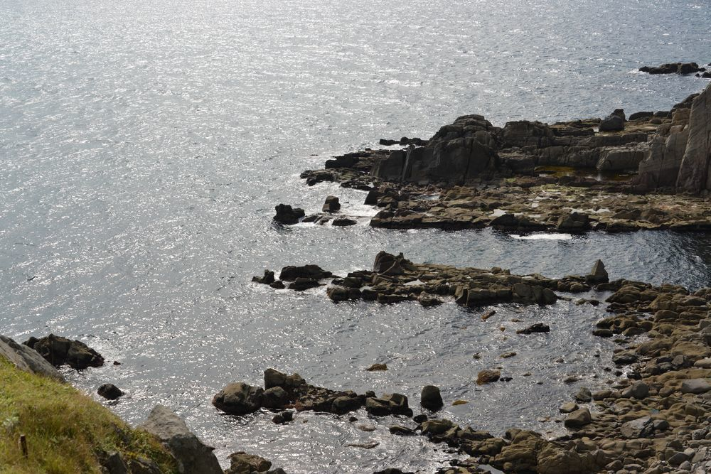 立待岬の岩場-8