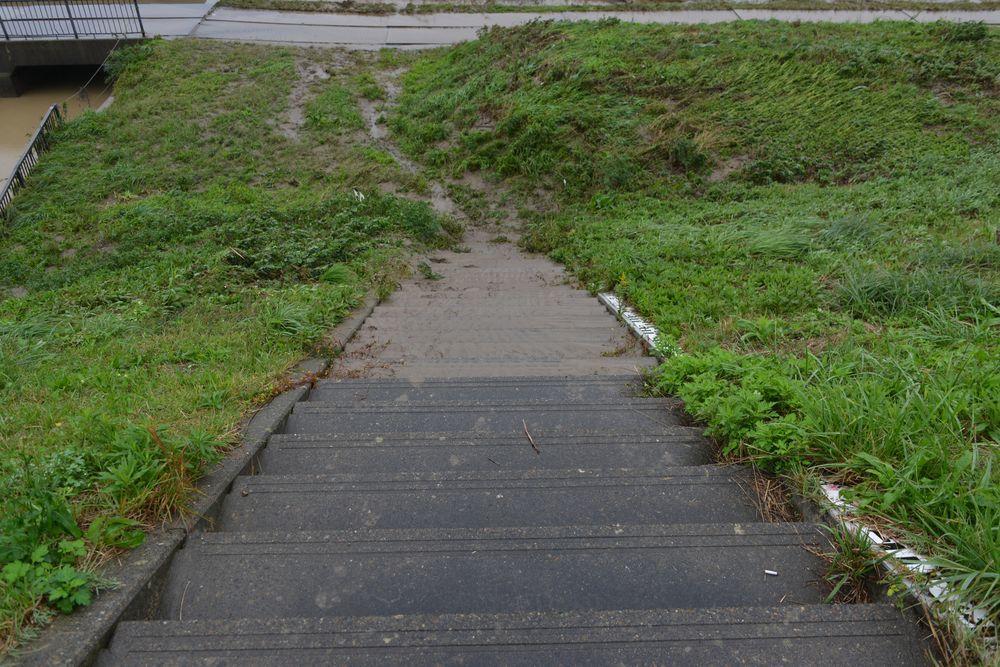 増水の跡 ここまで来た―4