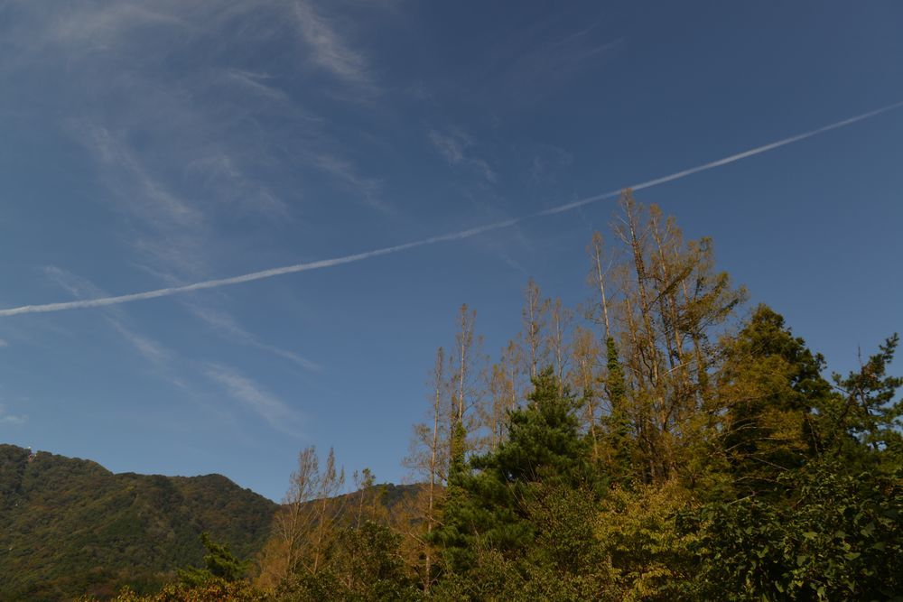 秋晴れの日-4