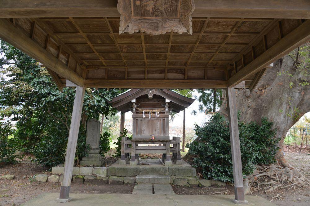 神社と大木-4