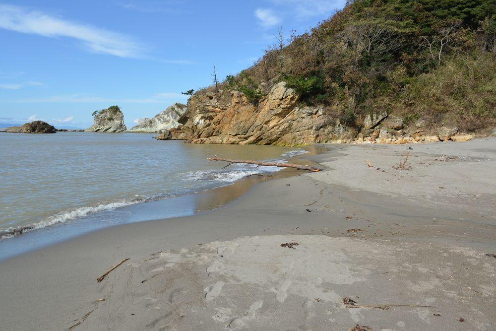 海岸に流木-2