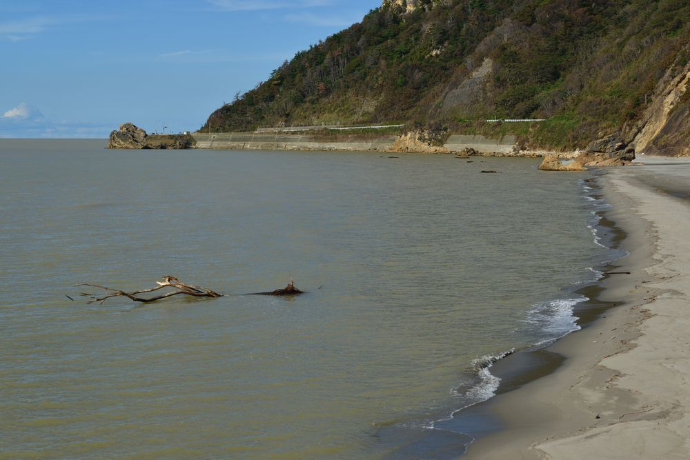 濁った海岸-1