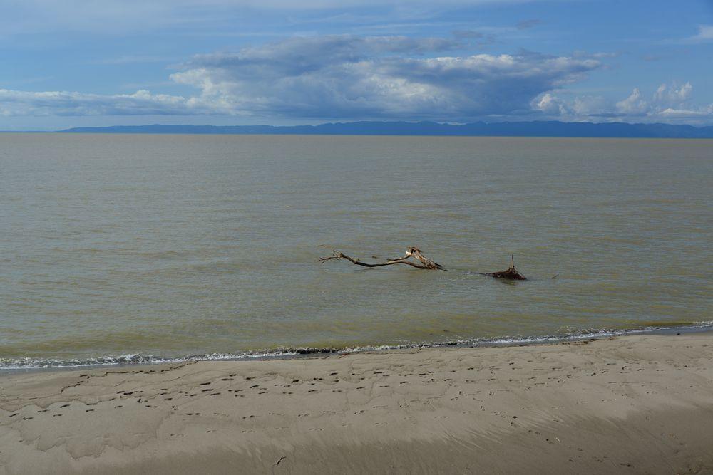 濁った海岸-3