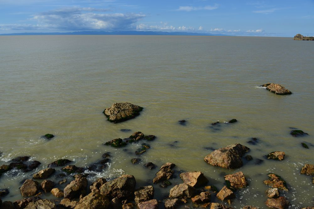 濁った海岸-4
