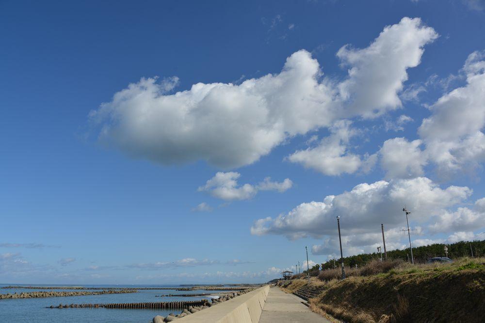 海岸ブラブラー1