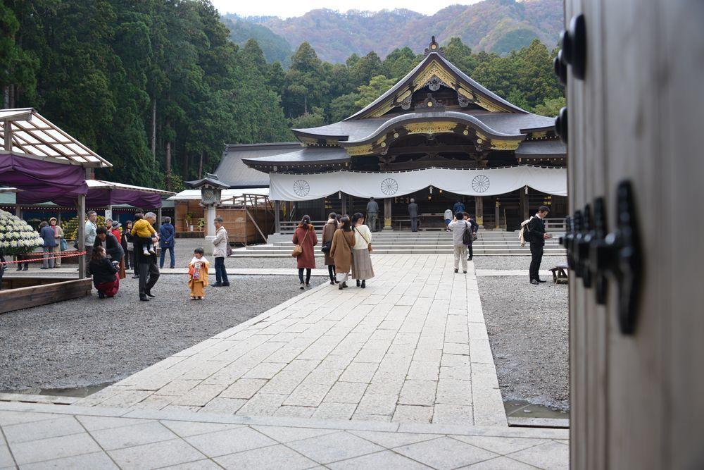 菊祭り-5