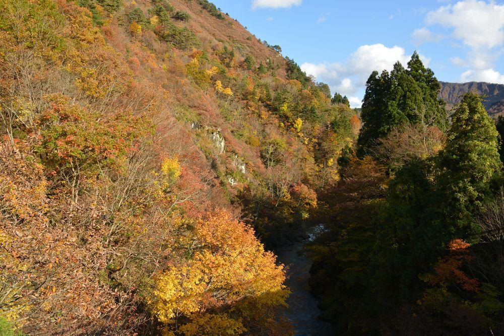 渓谷の紅葉-1