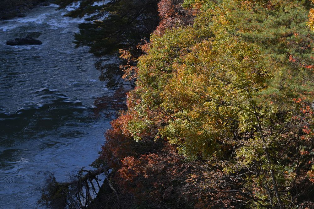 渓谷の紅葉-3