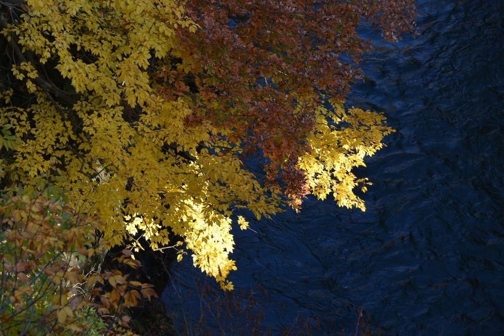 渓谷の紅葉-4
