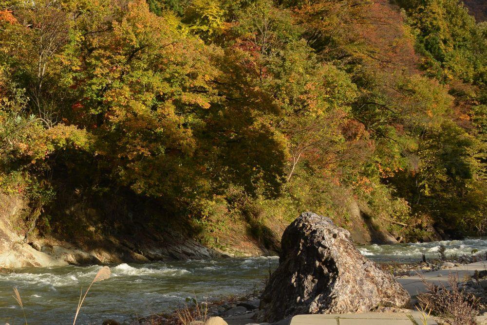 川沿いの紅葉-6
