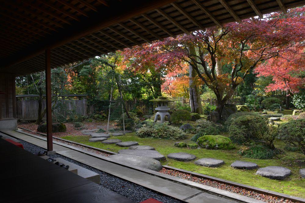庭を眺める-1