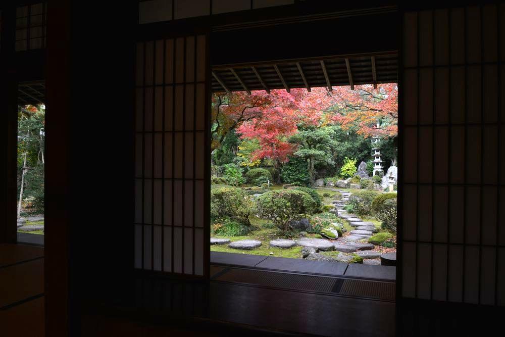 庭を眺める―4