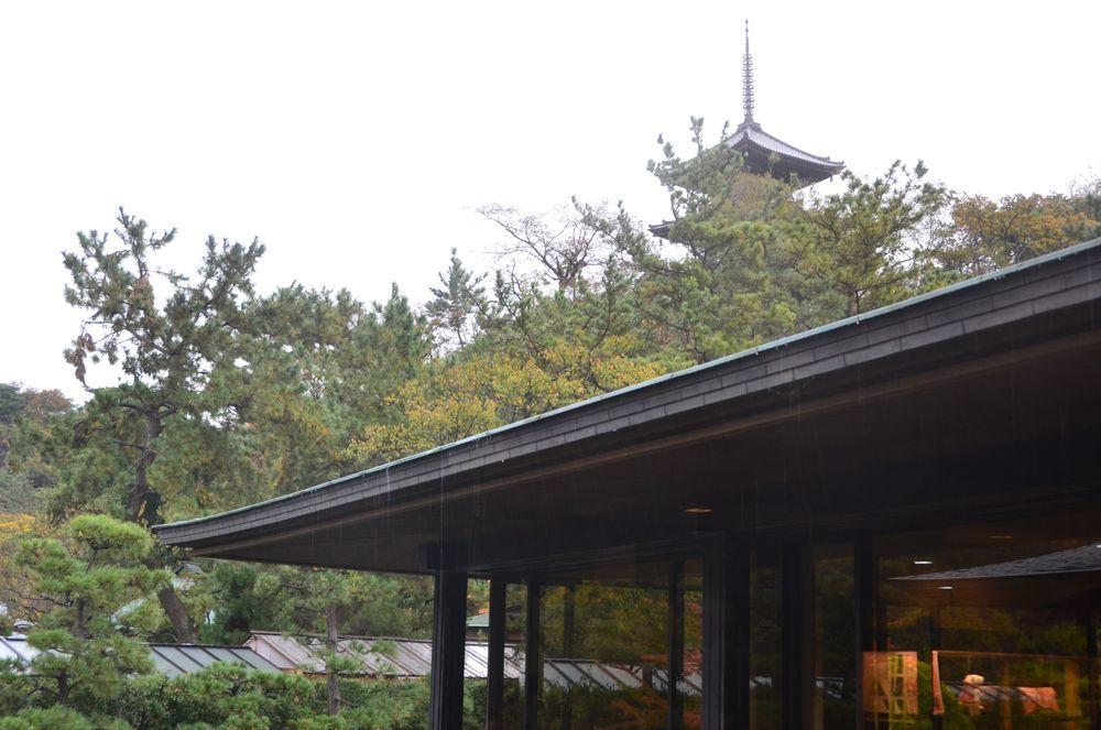 雨の三渓園-6