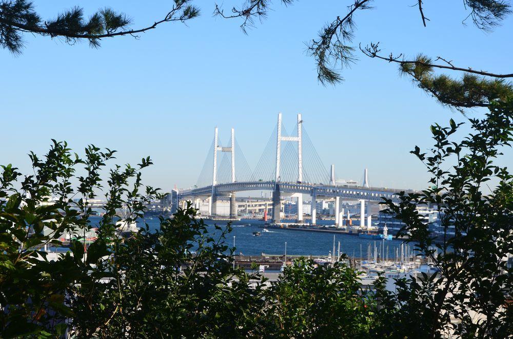 港の見える公園-9