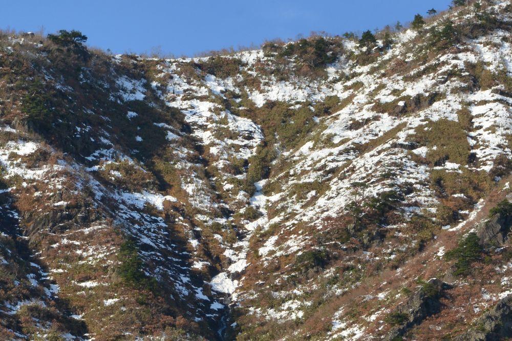 雪を前に-6
