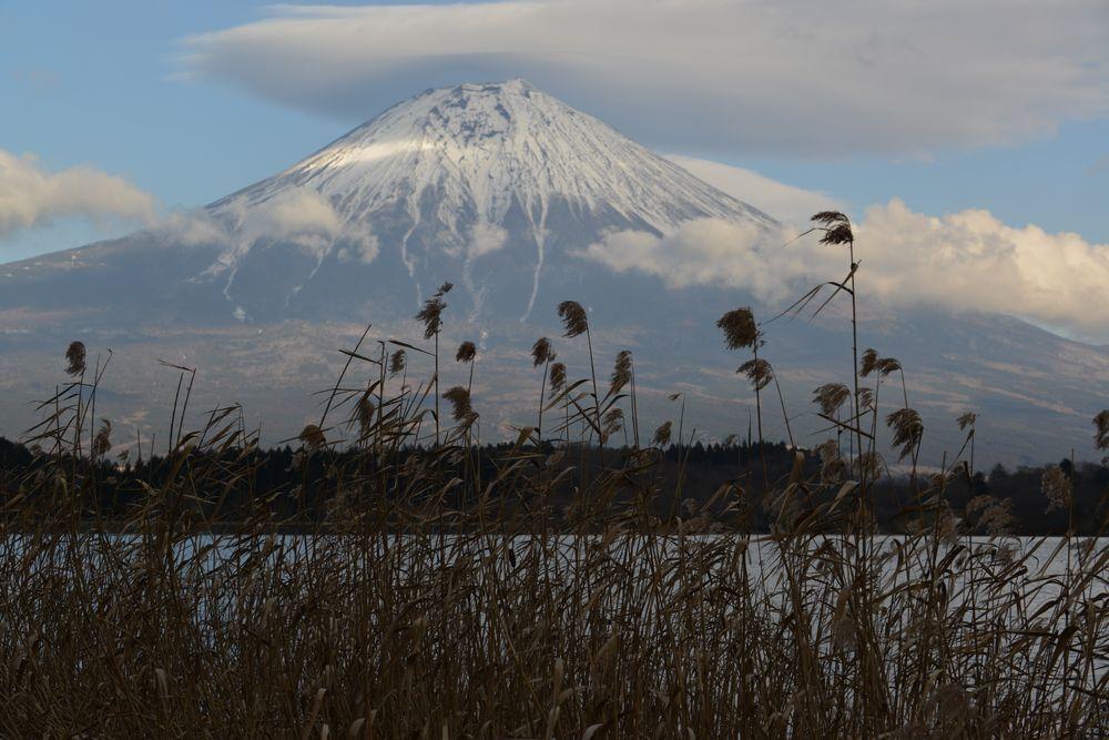 田貫湖から-2