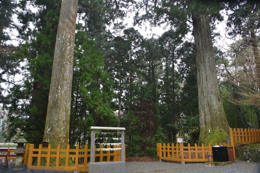 須山浅間神社-7