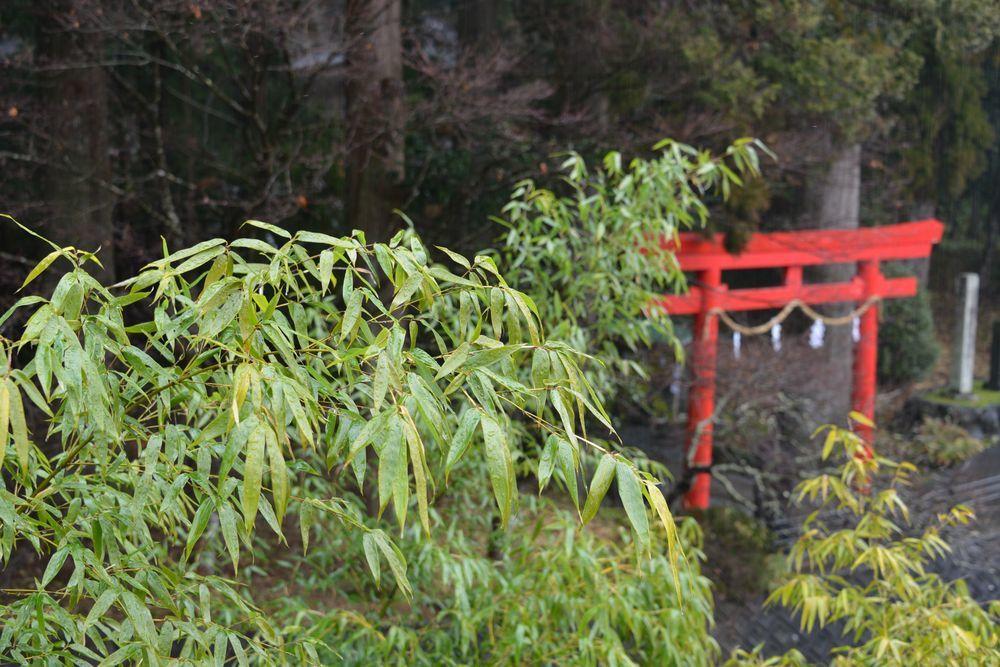 須山浅間神社境内-9