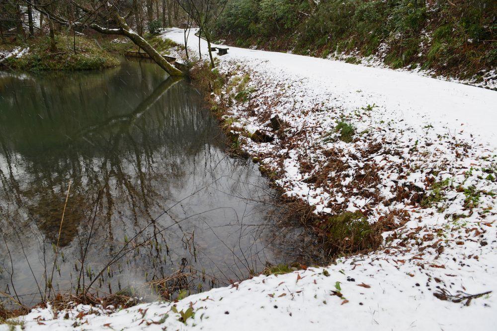 雪の公園-4