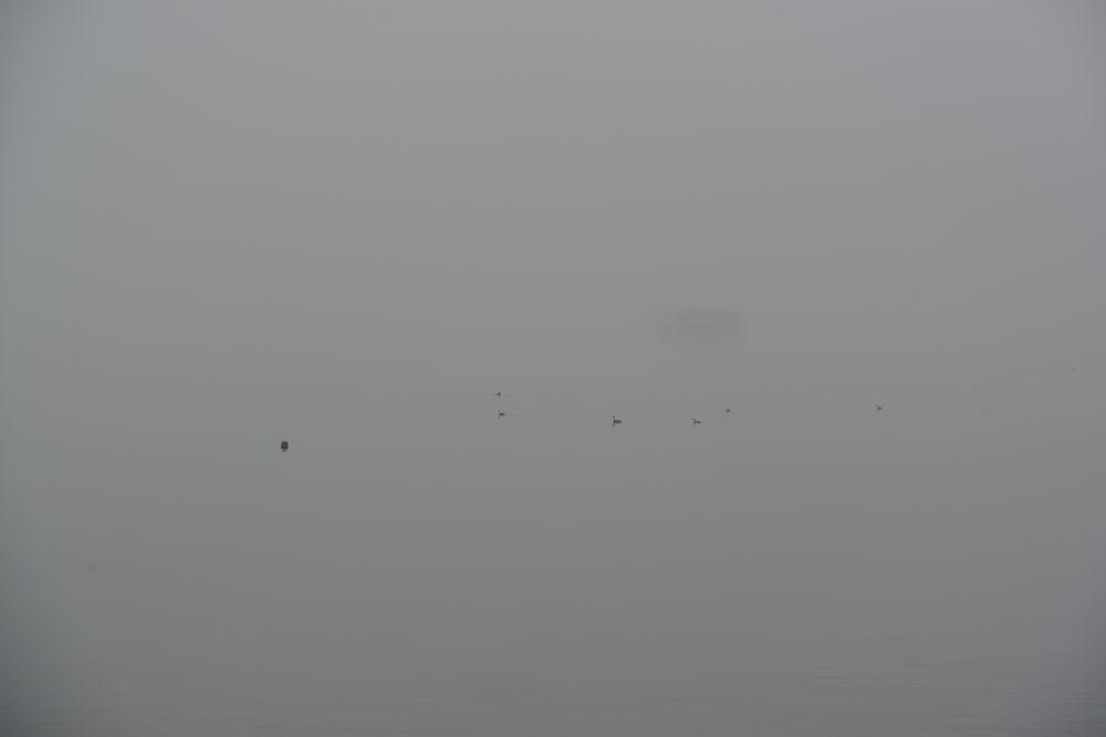 霧の山中湖-2