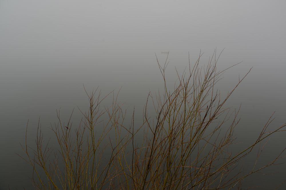 霧の山中湖-5
