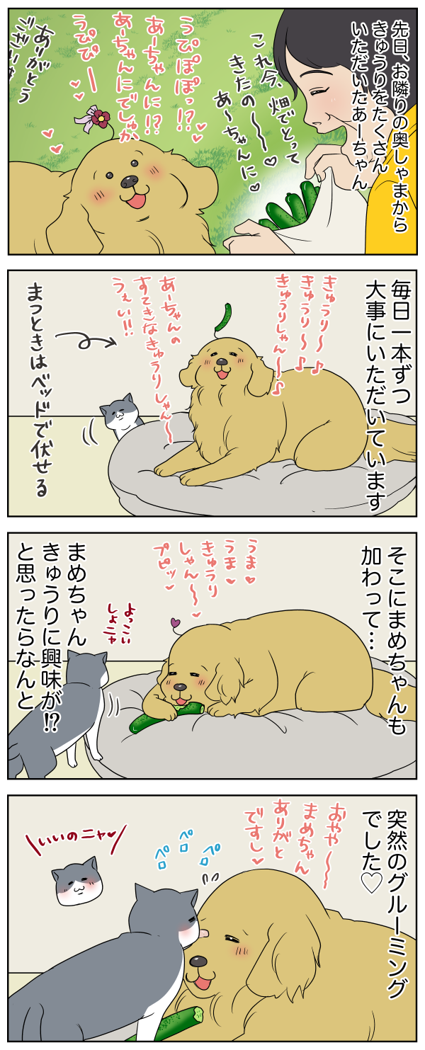20190710142934379.png