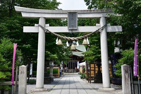 s-氷川神社DSC_4653_01