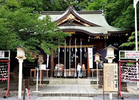 s-氷川神社DSC_4663_01