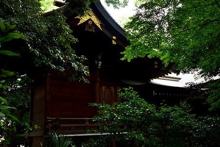 s-氷川神社DSC_4670_01