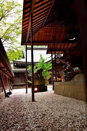 s-氷川神社風鈴DSC_5436_01