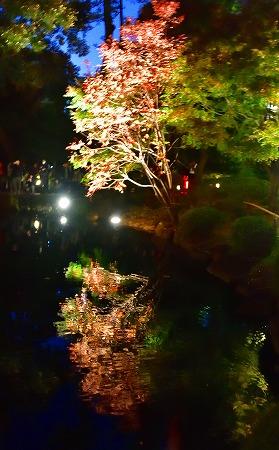 s-太田黒DSC_8560_01