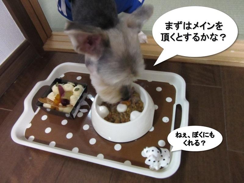 誕生日祝い3'