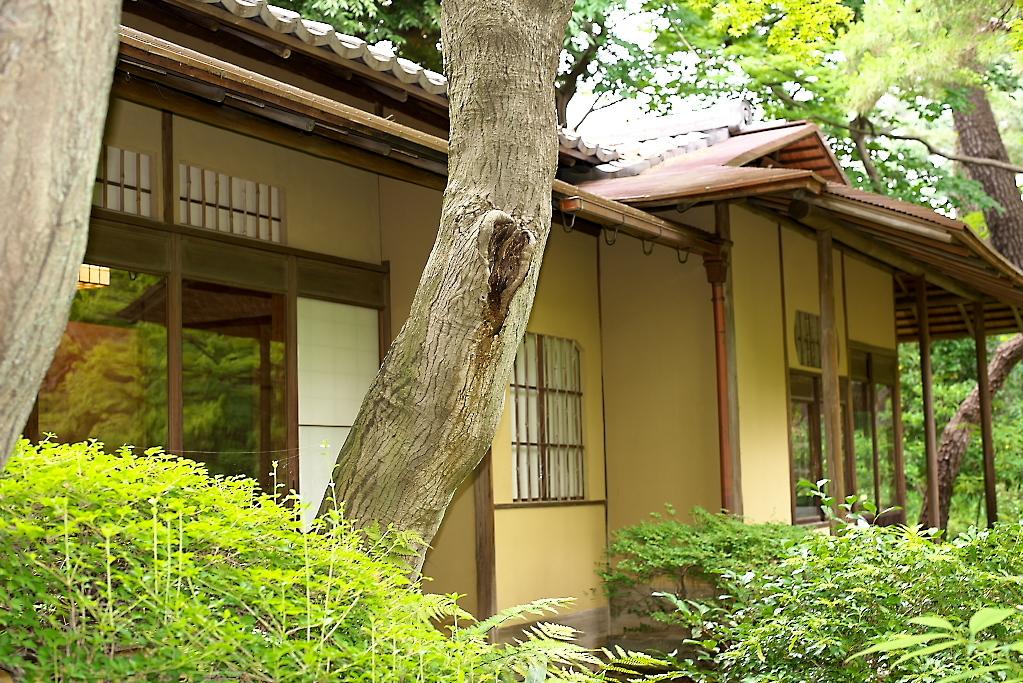 日本庭園(1)_8