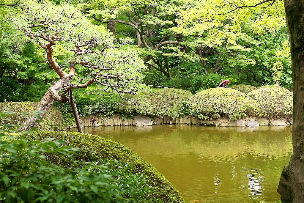 日本庭園(1)_9