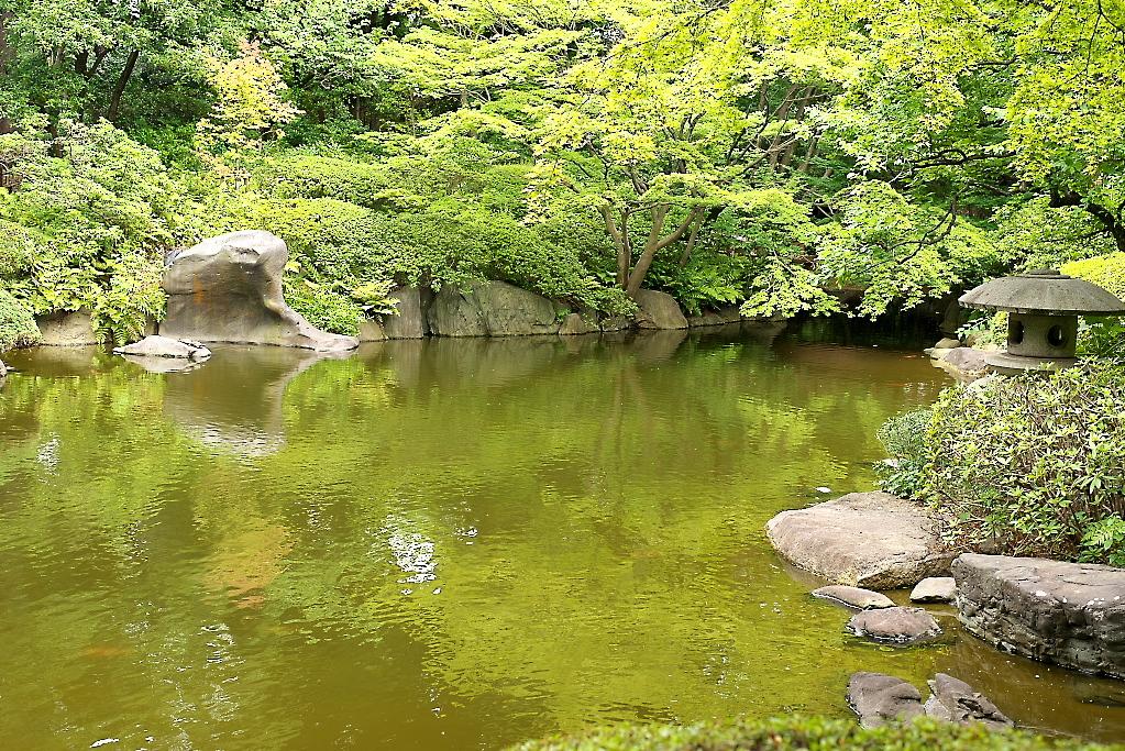 日本庭園(1)_10