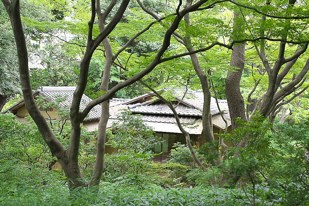 日本庭園(1)_13