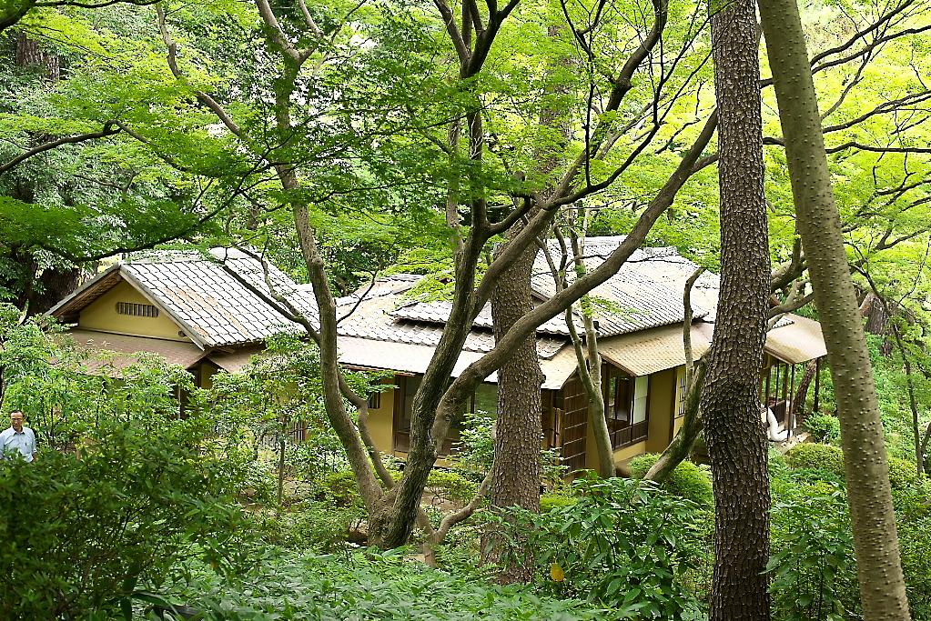 日本庭園(1)_14