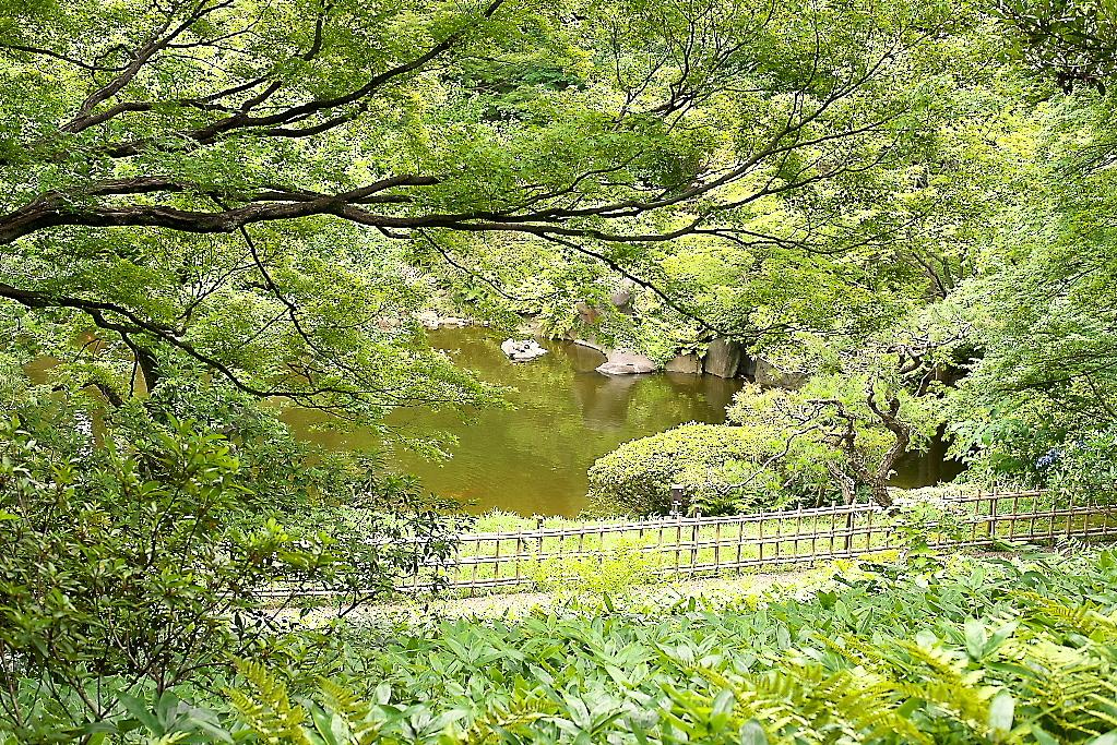 日本庭園(1)_15