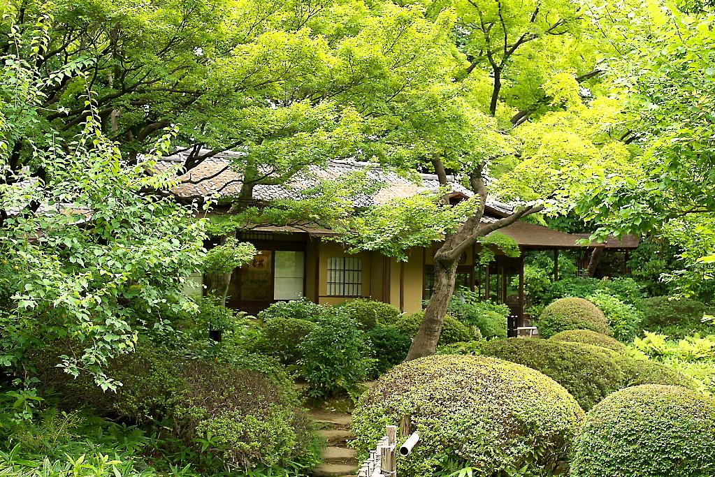 日本庭園(1)_20