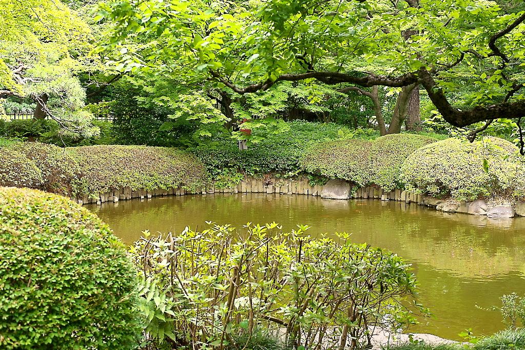 日本庭園(1)_22