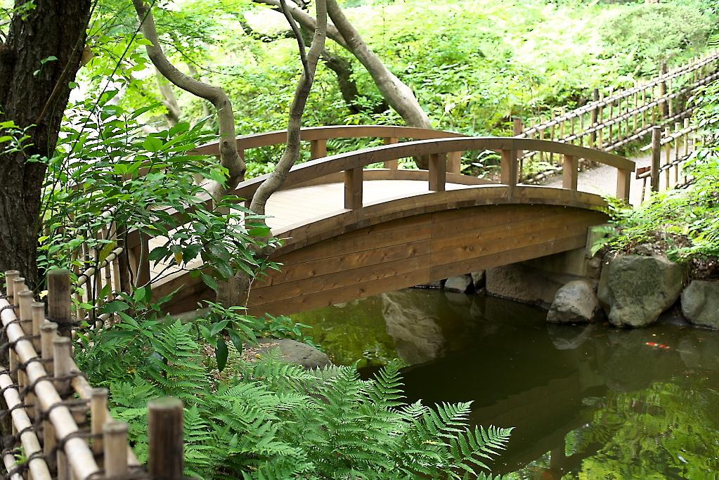 日本庭園(1)_23