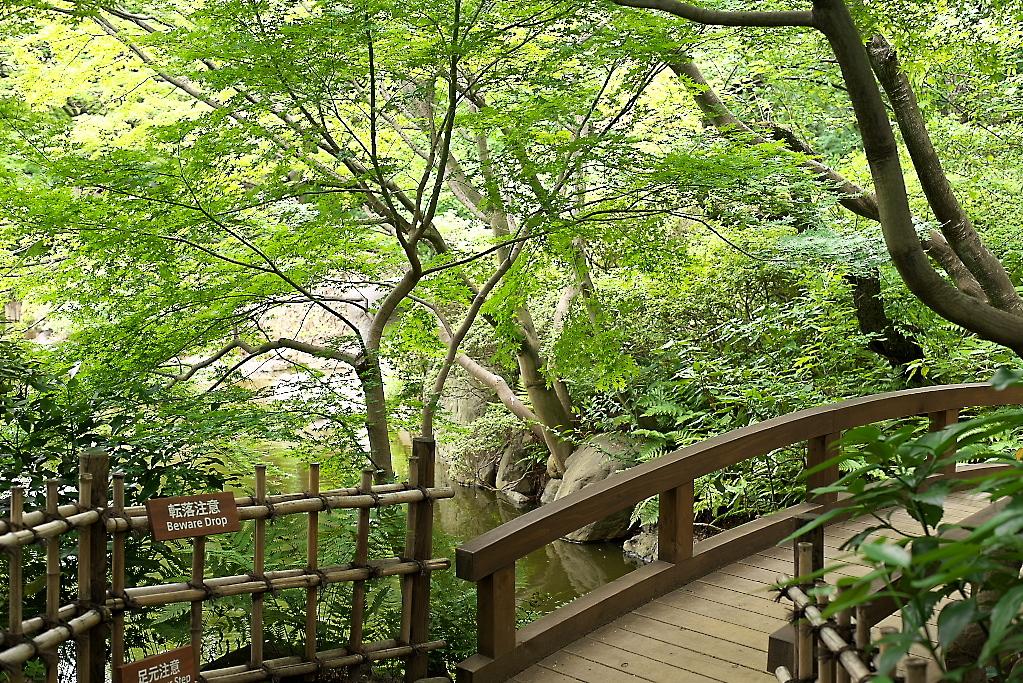 日本庭園(1)_24