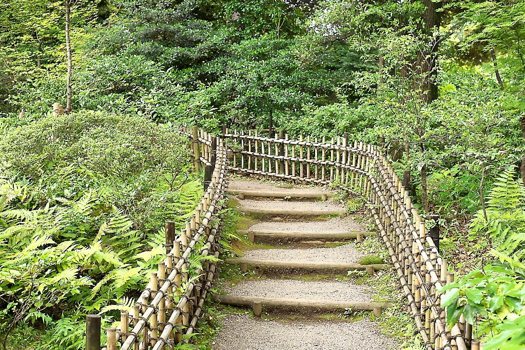 日本庭園(1)_25