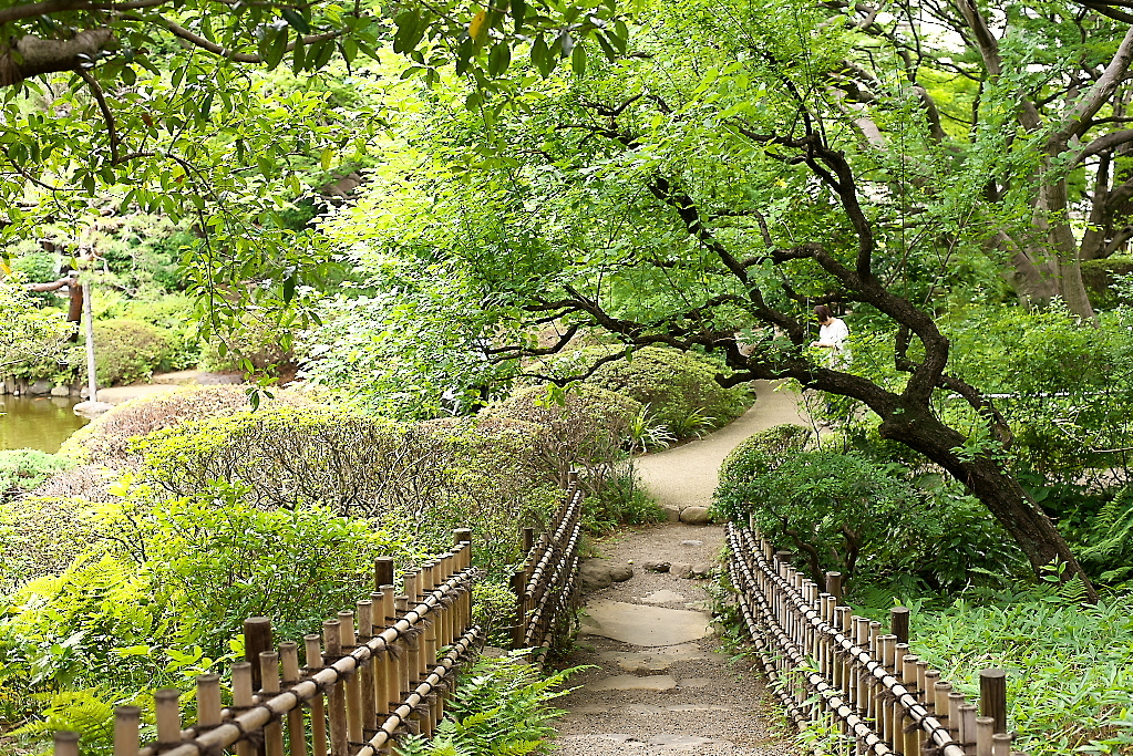 日本庭園(1)_27