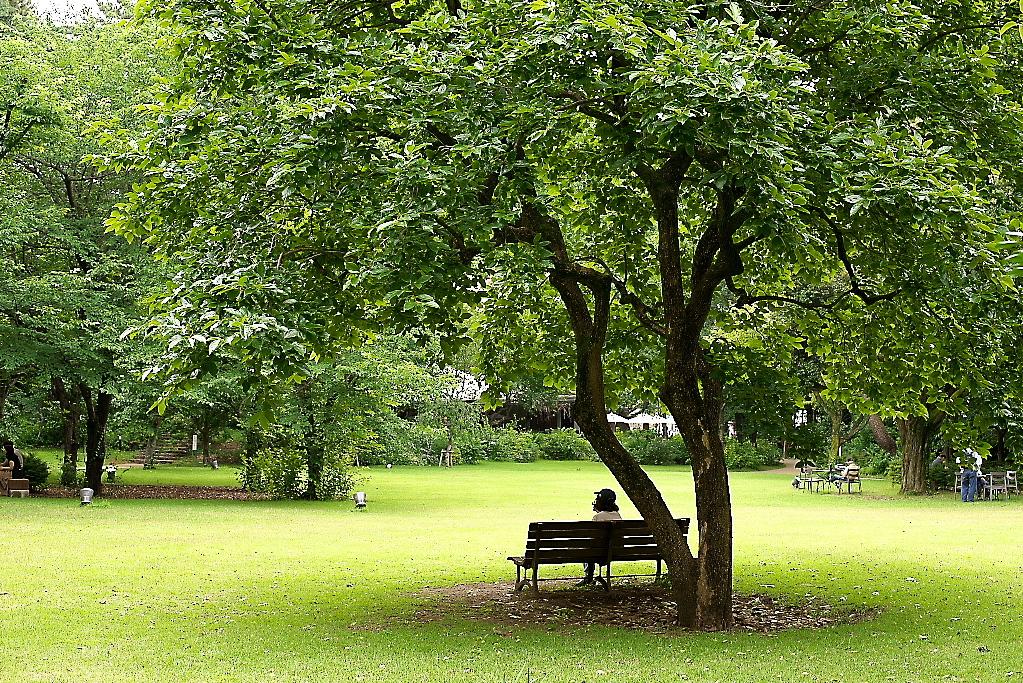 西洋庭園_2