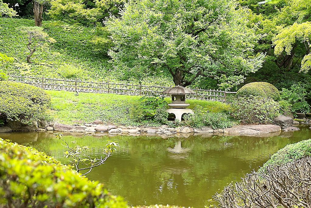 日本庭園(2)_2