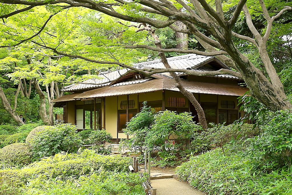 日本庭園(2)_4