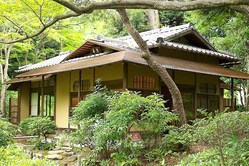 日本庭園(2)_5