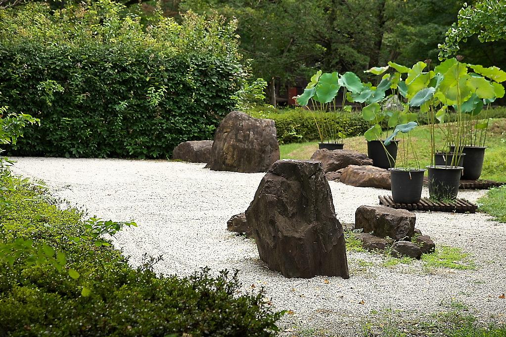 本堂と石庭_4
