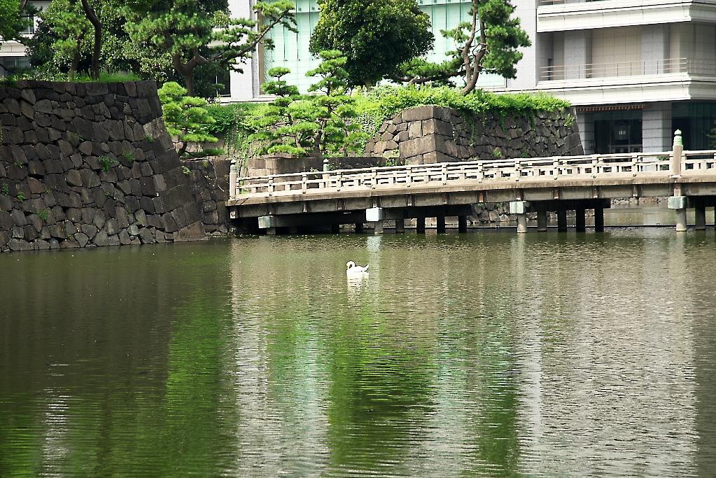 和田倉門近辺_3